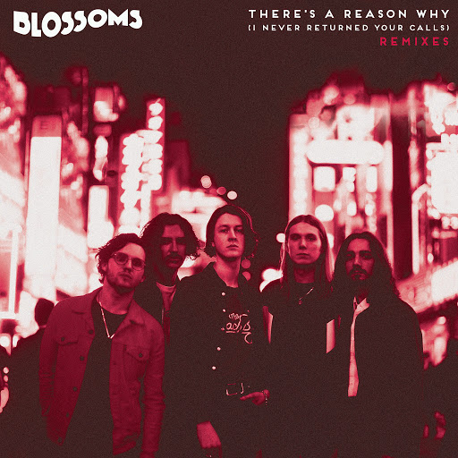 Blossoms album There's A Reason Why (I Never Returned Your Calls) (Remixes)