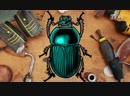 Часовые механизмы жуки и кропотливая работа художник из Китая превращает насекомых в необычные произведения искусства в стиле