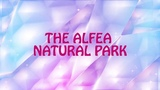 Winx Club. Season 7. Episode 1 - The Alfea Natural Park (Netflix, 1080p) Видео Dailymotion