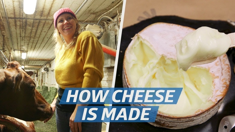 How Raw Milk Cheese Is Made at Jasper Hill Farms — How to Make It