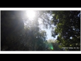 Lo_Air-Day_and_Night_(Original_Mix)