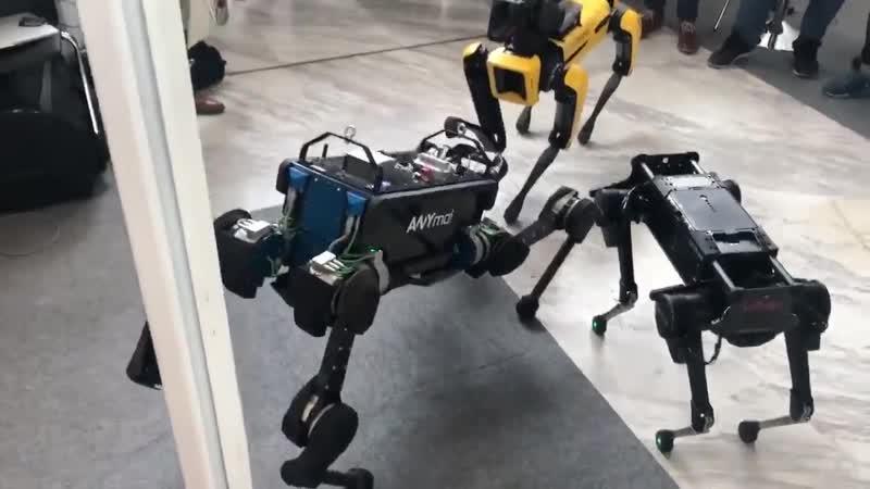 Laika, Anymal and SpotMini IROS2018