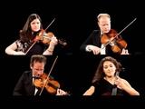 GLASS String Quartets Nos. 1-4 (Carducci String Quartet) Naxos 8.559636