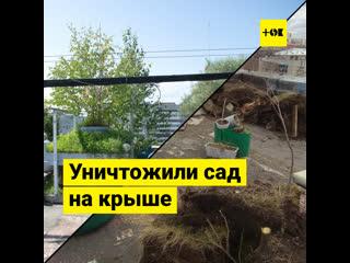 Управляющая компания уничтожила сад на крыше жилого дома