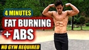 (New!) 4 min Fat Burning Abs Workout
