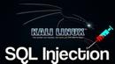 SQL Injection Tutorial For Beginners - 2 - sqlmap - Hack Vulnreable Websites