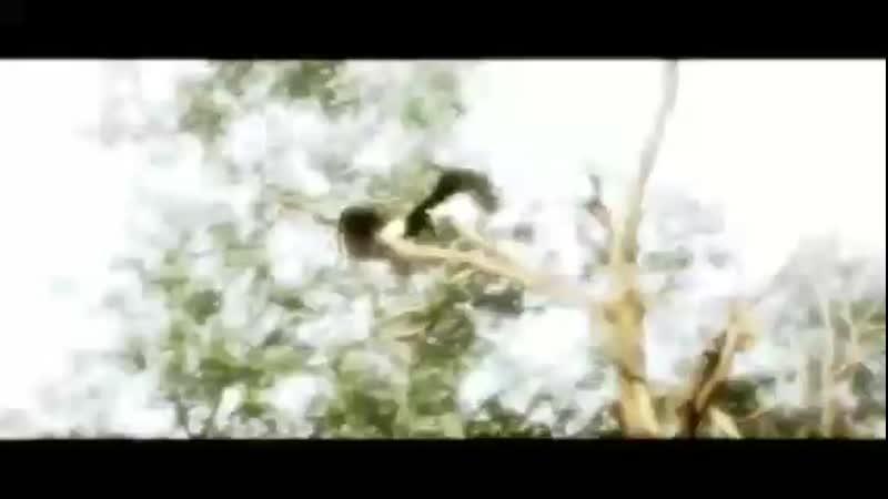 Nasheed Assasins Creed2
