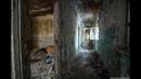 Заброшенные теплицы и общежития ВИР \ Пушкин Ленинградская область \ vlog путешествий 176
