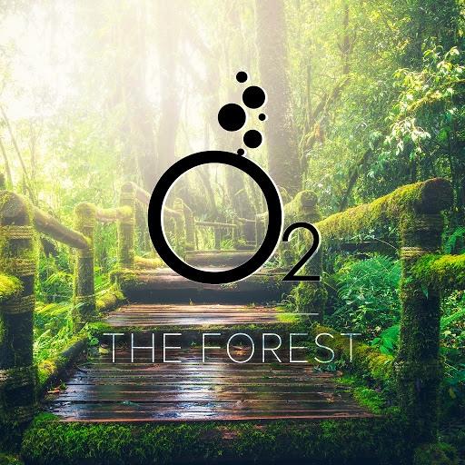 O2 альбом The Forest