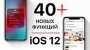 40 скрытых функций iOS 12 для iPhone и iPad Apple про это не рассказывала