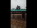 Володя Королёв Live
