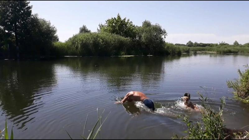 Я и Муха купаемся Черненький на берегу Me and a Fly are swimming Blackie is basking on the shore