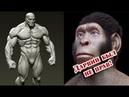 Это уже точно! Мы произошли не от обезьяны! Разрушена теория происхождения человека