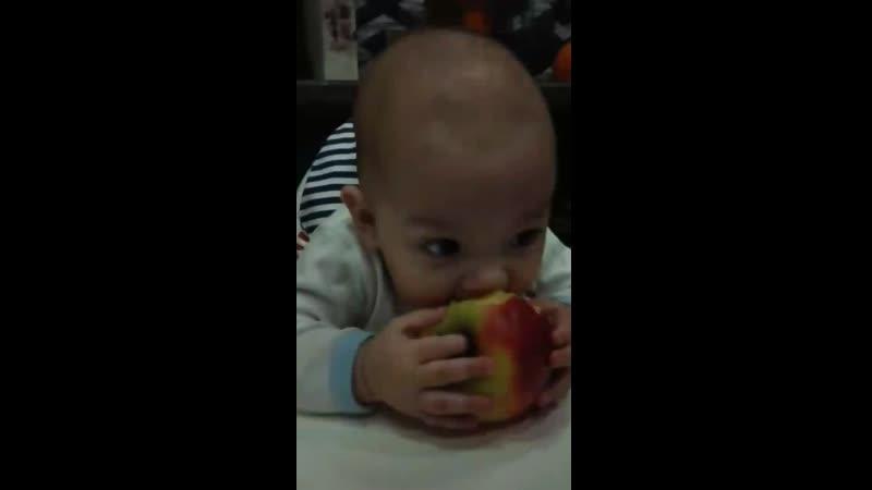 первое яблочко своими дёснами