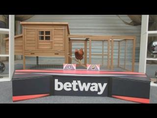 Прогноз от курицы на NaVi vs BIG