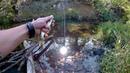 Утренняя и дневная охота на голавля