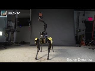 Робот SpotMini танцует. Оторваться невозможно