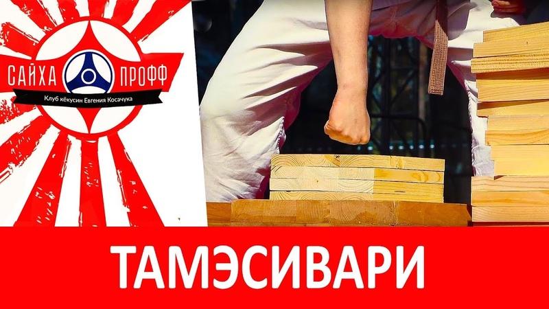 Чемпионат Белорусской ассоциации Кёкусинкай | Тамэсивари [Школа каратэ кёкусин Евгения Косачука]