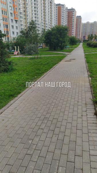 Коммунальные службы восстановили плитку на участке улицы Липчанского