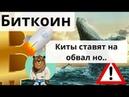 Биткоин киты ставят на обвал но.. Подозрения, манипуляции, Bitfinex