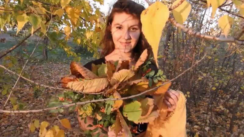Золото листвы манит в лес...