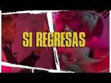 Lionel Ferro, XOVOX, Alika - Si Regresas (Official Video) #Musica #LioFerro #SiRegresas #Estreno