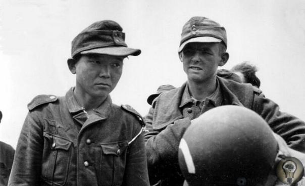 Янг Каянджонг  солдат поневоле армий пяти стран мира.