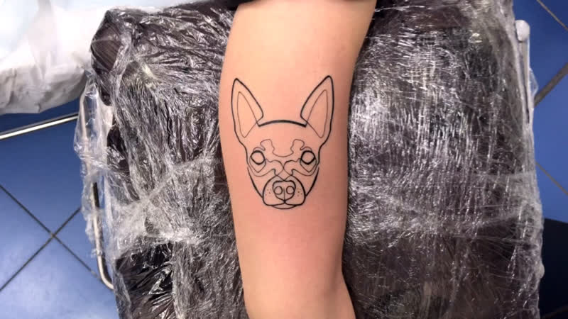 Тату мастер Катя Маслова girls linework tattoo dog Тату студия Дом Элит Тату Tattoo Studio Moscow