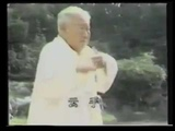Fu Zhong Wen Yang Tai Chi Long Form part 2