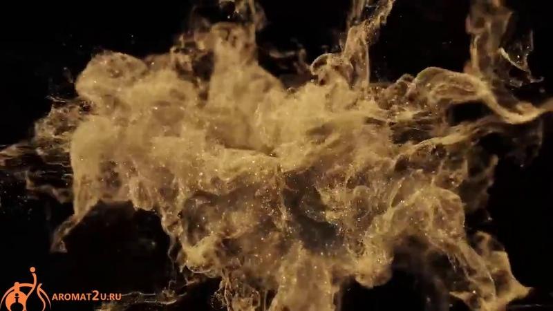 Gucci Oud Gucci / Гуччи Уд - отзывы о духах