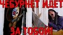 1.11.2019 РУНЕТ ВСЕ? 😮 Привет ЧЕБУРНЕТ! 😱 Конец интернта в РФ!