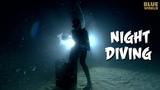 Night Diving! JONATHAN BIRD'S BLUE WORLD