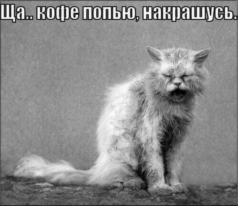Наталья Первышина | Санкт-Петербург