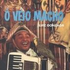Luiz Gonzaga альбом Ô Véio Macho