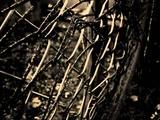 Soliloquium - Garden of Truculence (Swedish DeathDoom Metal)