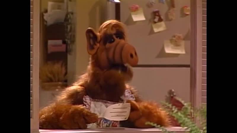 Alf Quote Season 1 Episode 11 В тостере