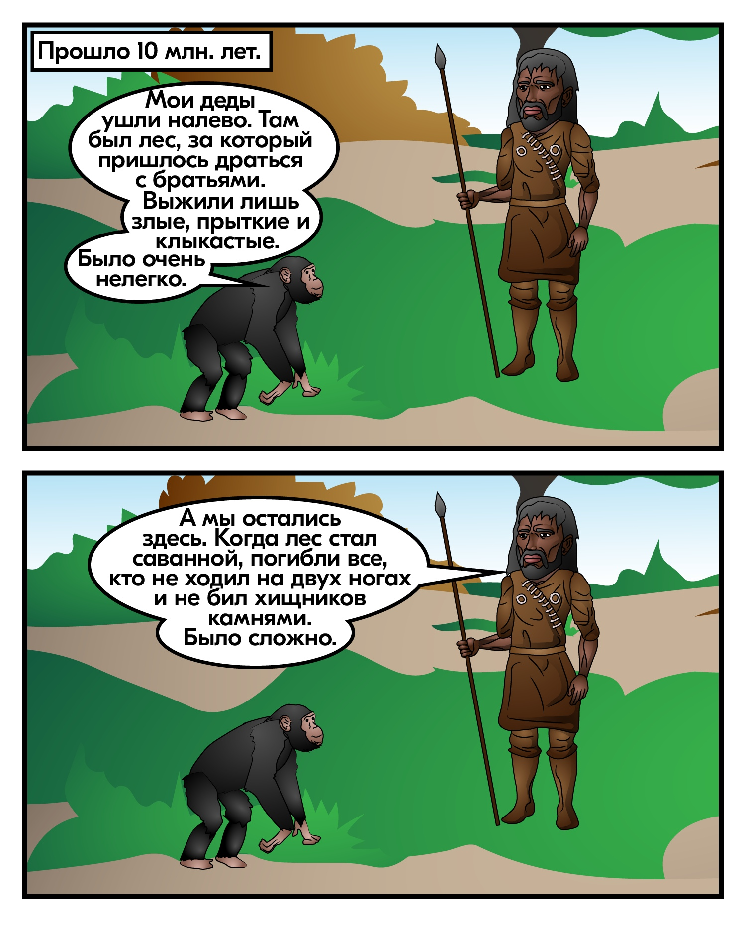 Ветви эволюции