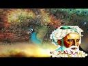 Великие цитаты и афоризмы Омара Хайяма которые актуальны сегодня