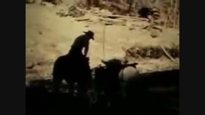 Patterson Gimlin Bigfoot Film Complete Version