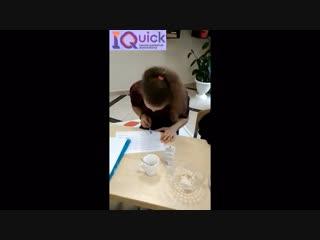 Как проходят наши занятия по скорочтению