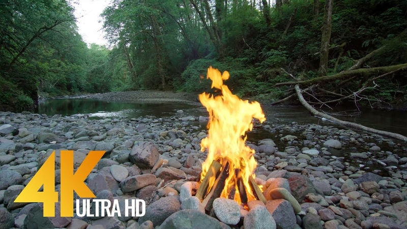4K Campfire near the River - 3 Hours Nature Sounds and Bird Signing - Episode 1