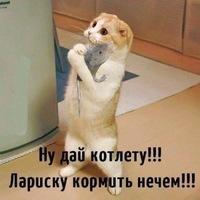 Анкета Евгений Кирсанов