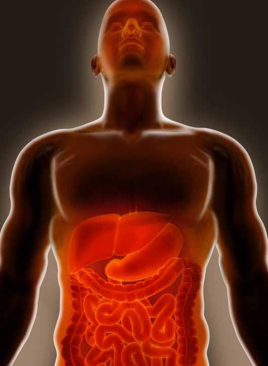 Когда возникает воспаление, оно может вызвать жжение в желудке.