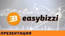 Easy Bizzi Презентация
