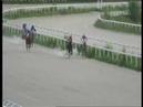 12.05.2017 - Открытый приз на лошадях 3-х лет арабской породы - Тапаз Терск