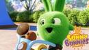 SUNNY BUNNIES I CONIGLI IN BICI Cartoni animati divertenti per bambini WildBrain