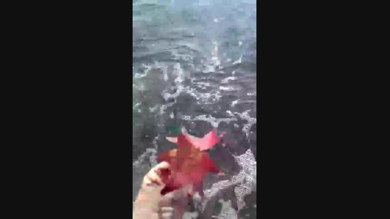 море и осень, которая лето