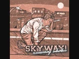 Skyway! - Back In the 80s, This Song Ruled(Tracy Chapman - Fast Car cover)