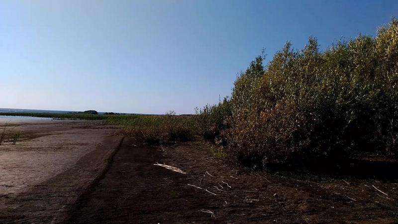 Берег недалеко от поселка Речная долина