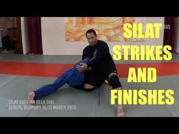 Silat Strikes and Finishes - Silat Suffian Bela Diri